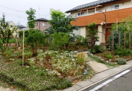 お客さまと作るナチュラル・ガーデン|比企郡滑川町 K様邸の外構、エクステリア、植栽工事
