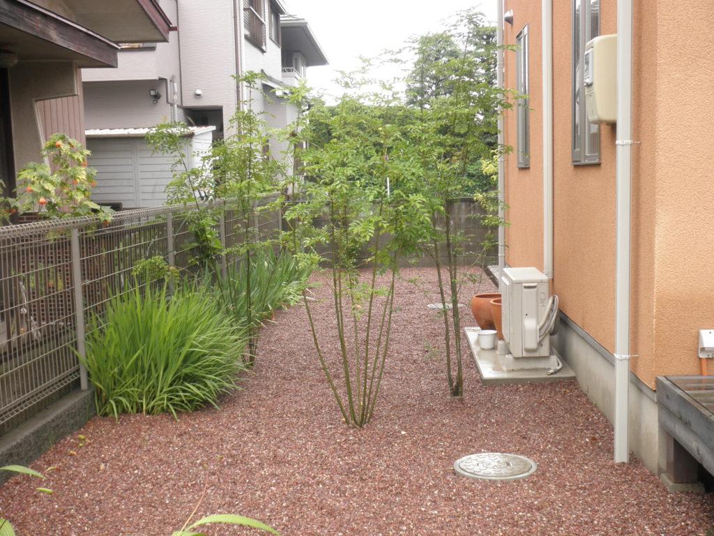 シマトネリコの林を抜けて|埼玉県熊谷市 O様邸のエクステリア、植栽工事